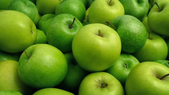 خرید عمده سیب سبز مراغه